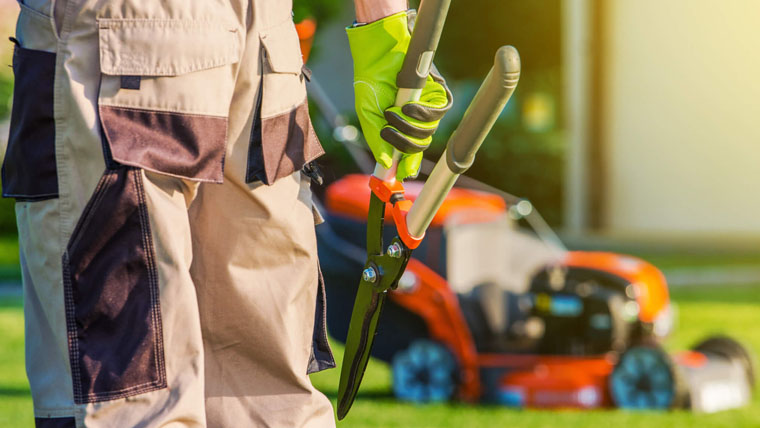lawn-care-business-name-ideas