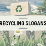 recycling slogans and phrases